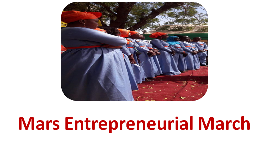 Mars entrepreneurial march